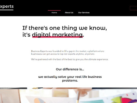 clean sleek website for buisness consultant