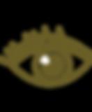 seven senses program - sight.png