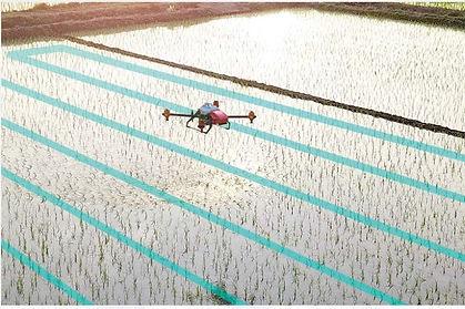 P30 agricultural spray drones