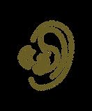seven senses program - sound.png