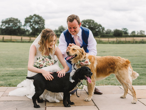 bride and groom and dog at wedding