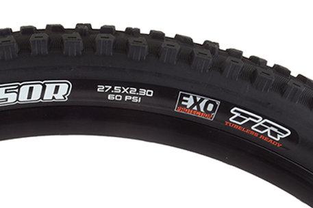 Maxxis Aggressor Tire - 29 x 2.3, Folding, Tubeless, Black, Dual, EXO