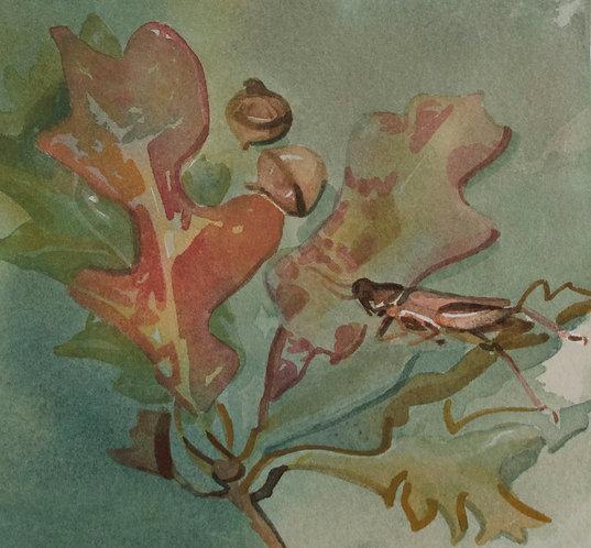 Cricket, Oak Leaves and Acorns