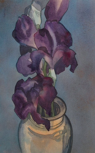 A Melancholy of Iris