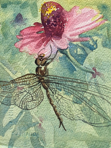 Dragonfly and Zinnia