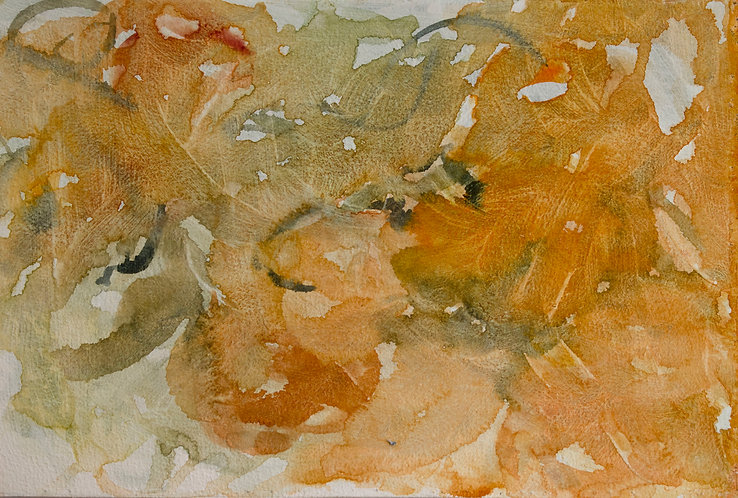 An Abstract of Tea Roses