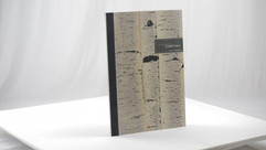 Villas at Cortina Presentation Book