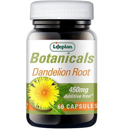 Lifeplan Botanicals Dandelion Root 450mg 60 Capsules