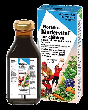 Floradix Kindervital for Children 250ml