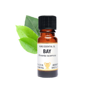 Amphora Aromatics Bay Oil 10ml