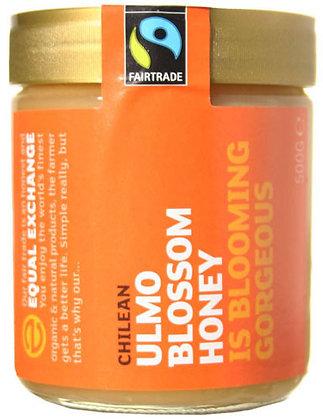 Equal Exchange Chilean Ulmo Blossom Honey 500g