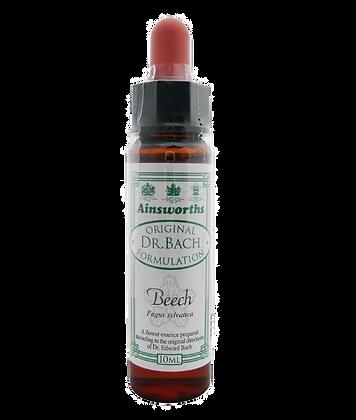 Original Dr Bach Method Beech 10ml