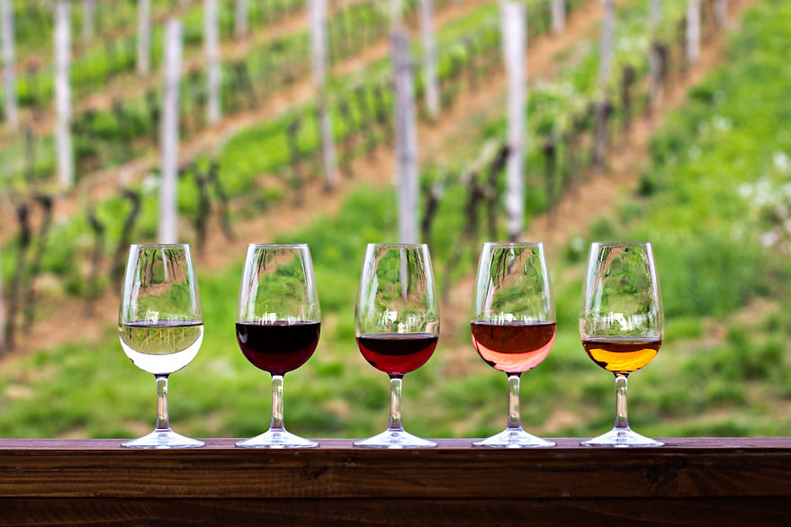 Glasses with wine. Red, pink, white wine