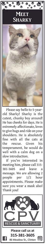 CPV Sharky web copy.jpg