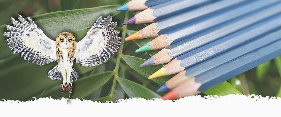 banner-owl.jpg