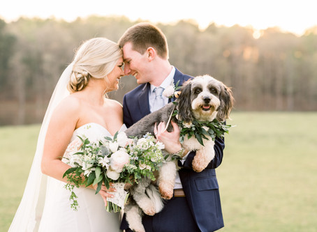 How To Incorporate Your Pet Into Your Wedding Day