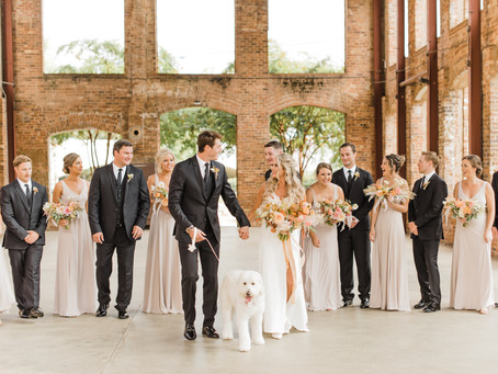 Ways to Incorporate your Dog Best Friend into your Wedding Day