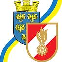 Wappen NÖ-LFV.png
