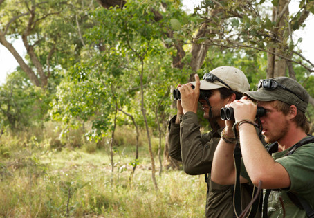 10 traits of a great guide safari guide