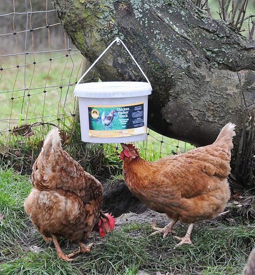 Chicken Pecking Block