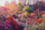 Région_-_Parc_Floral_2.jpg.jpg