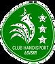 HandiLOISIRS-3-2.png
