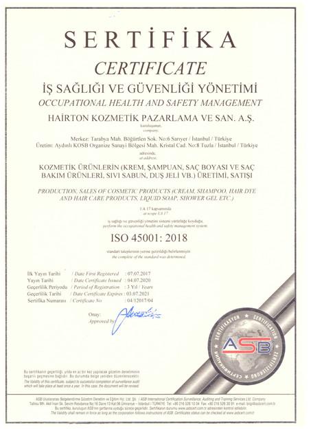 İş Sağlığı & Güvenliği Yönetimi ISO 45001