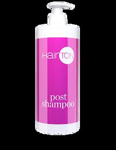 Hairton Post Shampoo.png