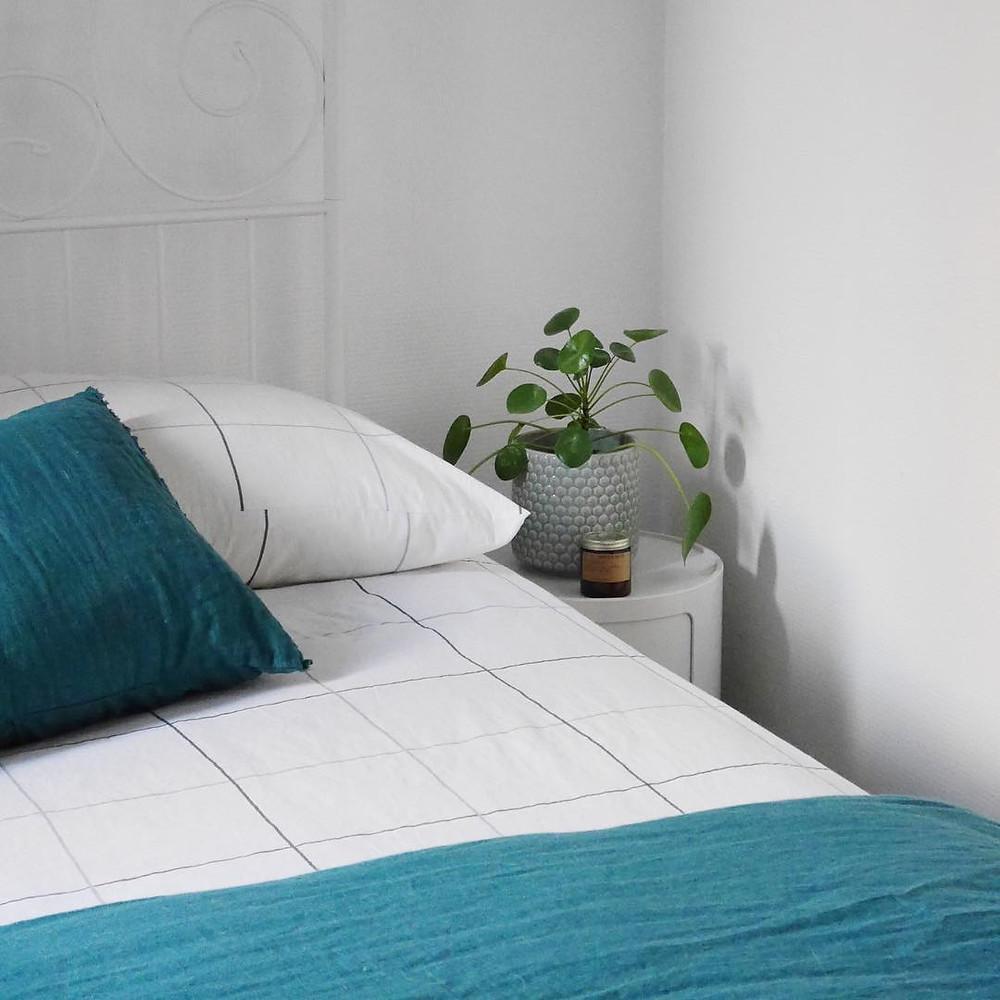Pilea Peperomioides decor ideas bedroom