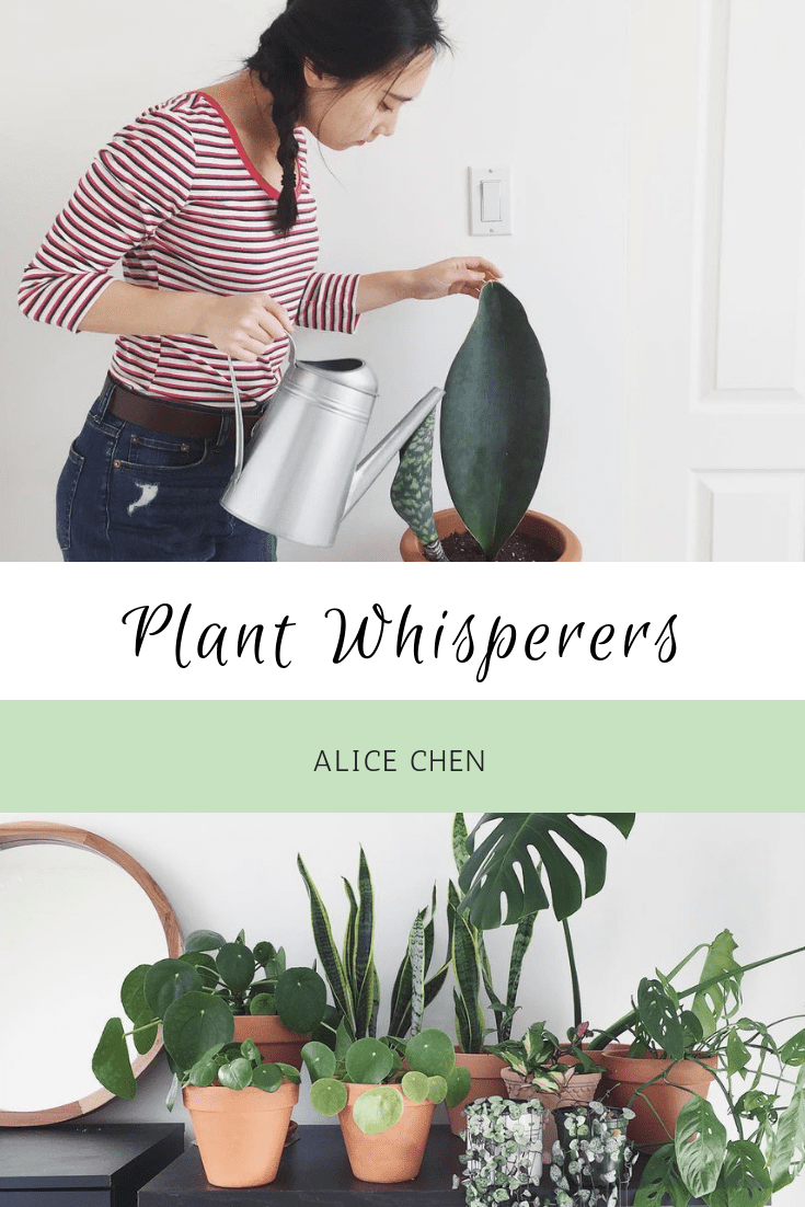 Plant Whisperers: Alice Chen