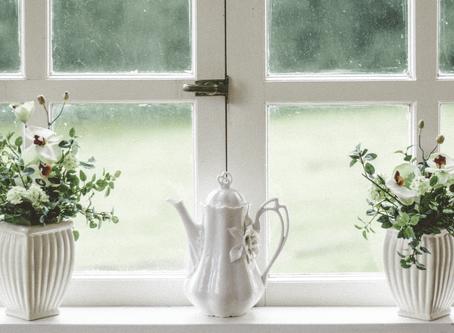 Benefits Of Living With Indoor Plants