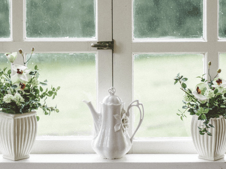 Benefits Of Living With Indoor Plants