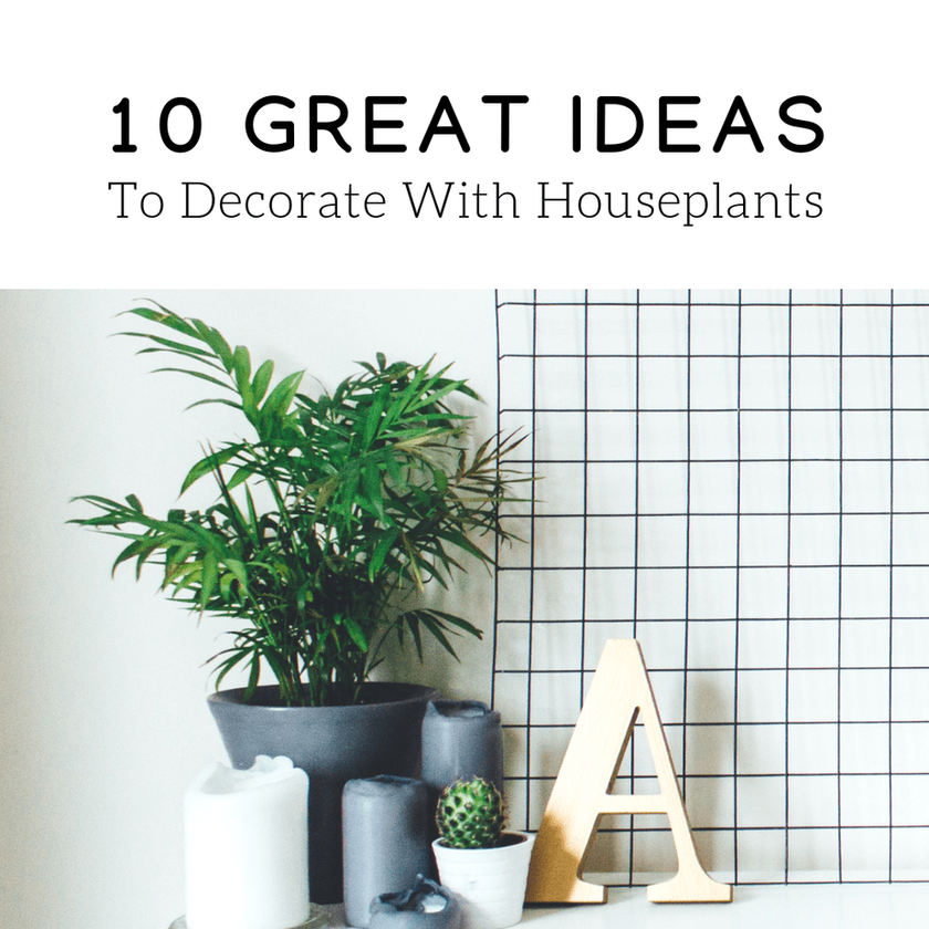 10 Great Ideas To Decorate With Houseplants
