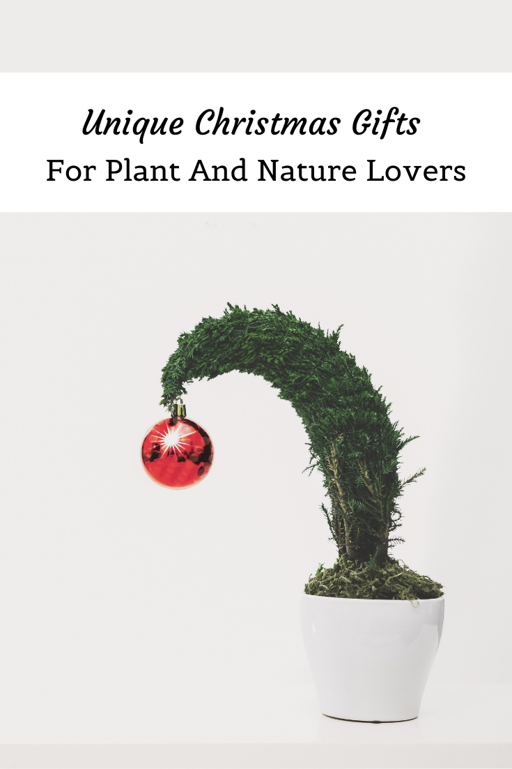 Unique Christmas Gifts For Plant And Nature Lovers