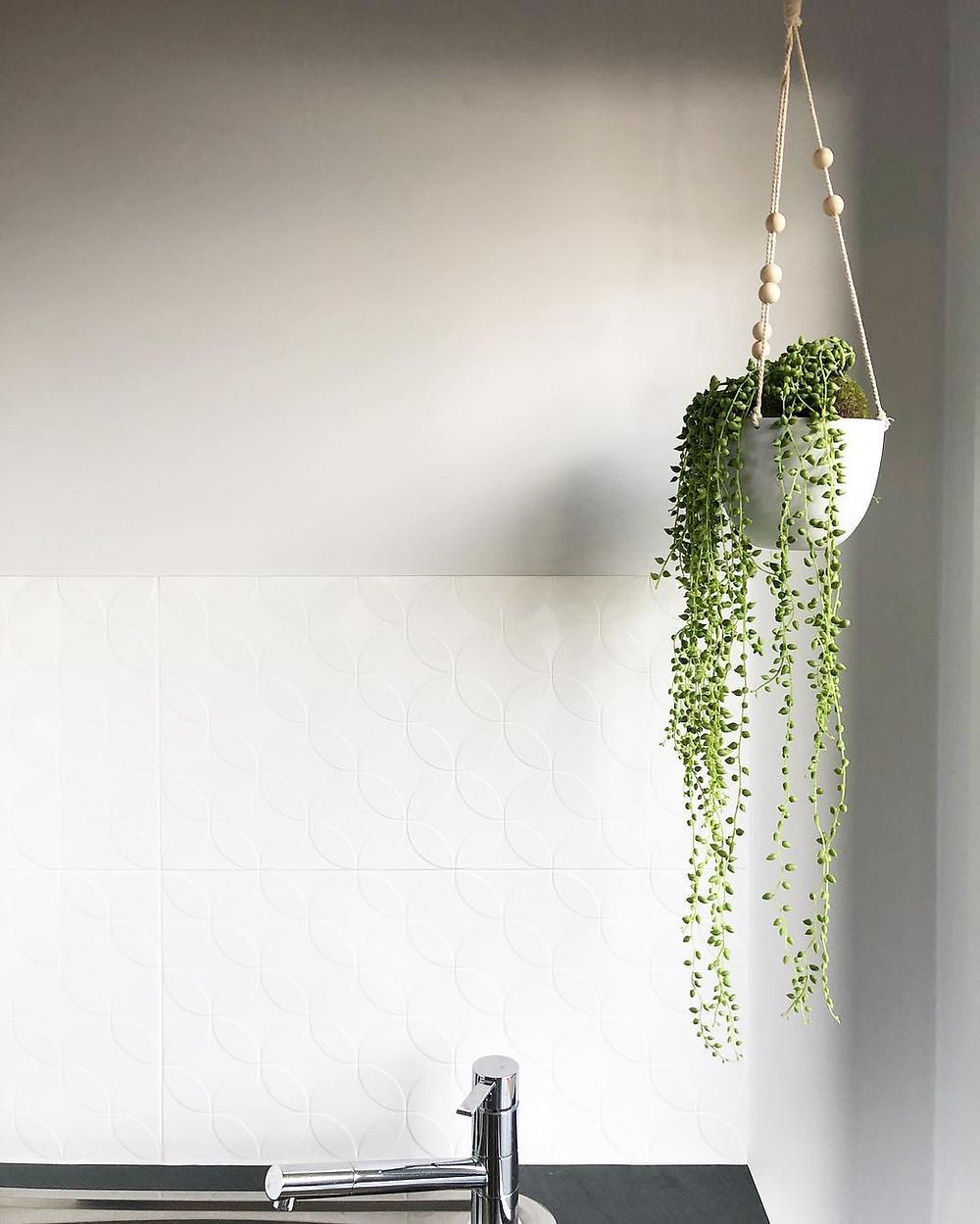 Houseplants Decor Ideas Hanging Pot