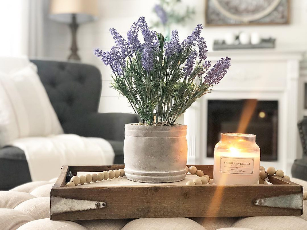 Lavender Plants for ùSleep Bedroom