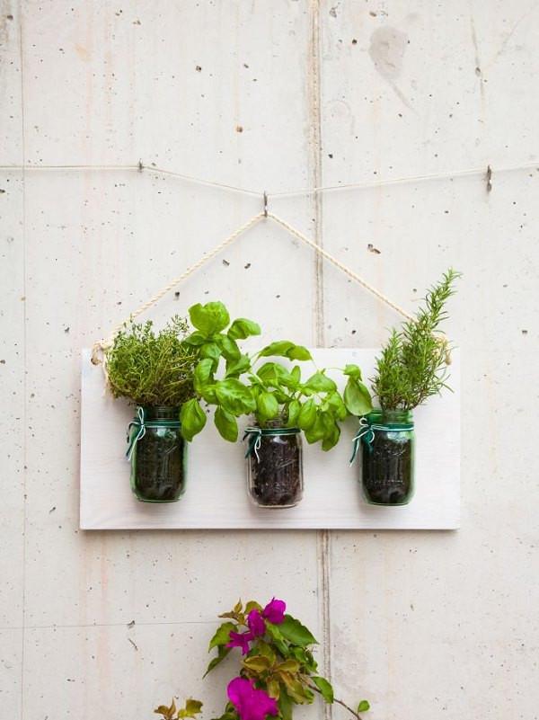 Houseplants Decor Ideas Mason jars herbs kitchen