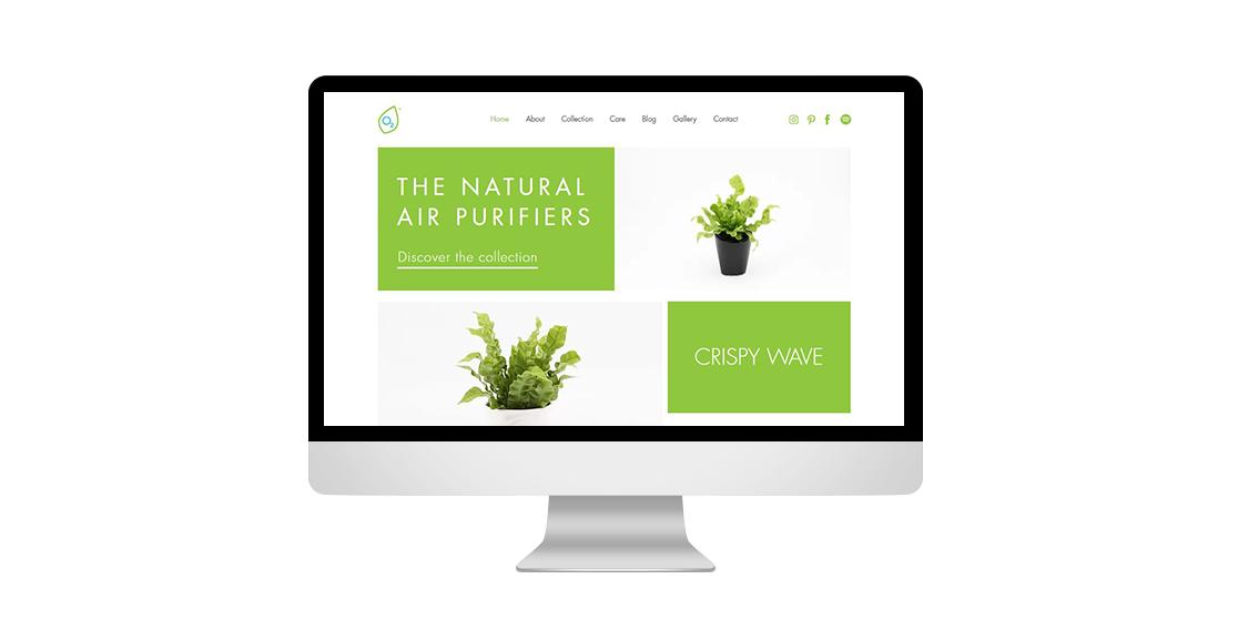 Aerifyplants.com
