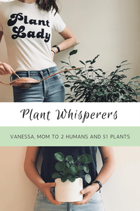 Plant Whisperers: Vanessa, Mom To 2 Humans And 51 Plants