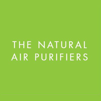 natural air purifiers.JPG