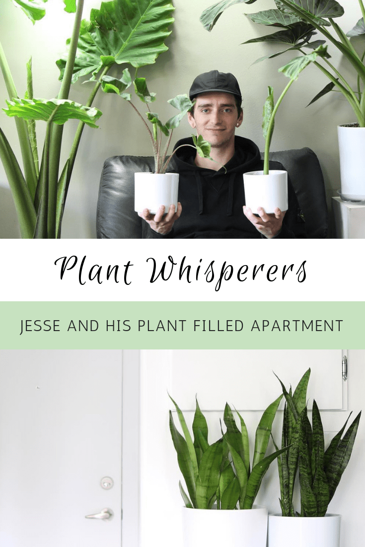 Plant Whisperers: Jesse And His Plant Filled Apartment