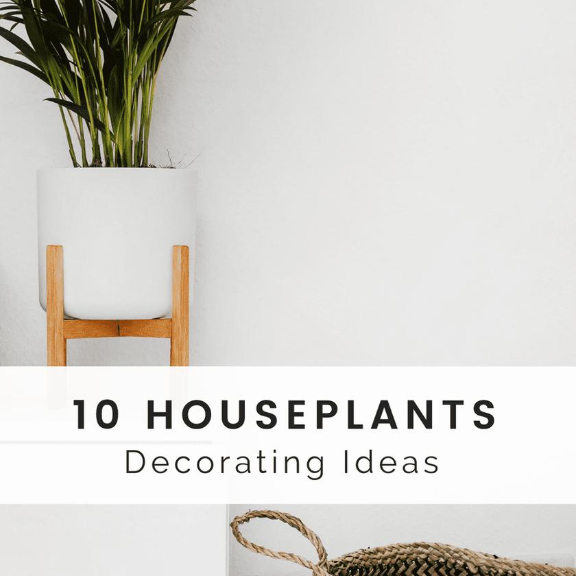 10 Houseplants Decorating Ideas