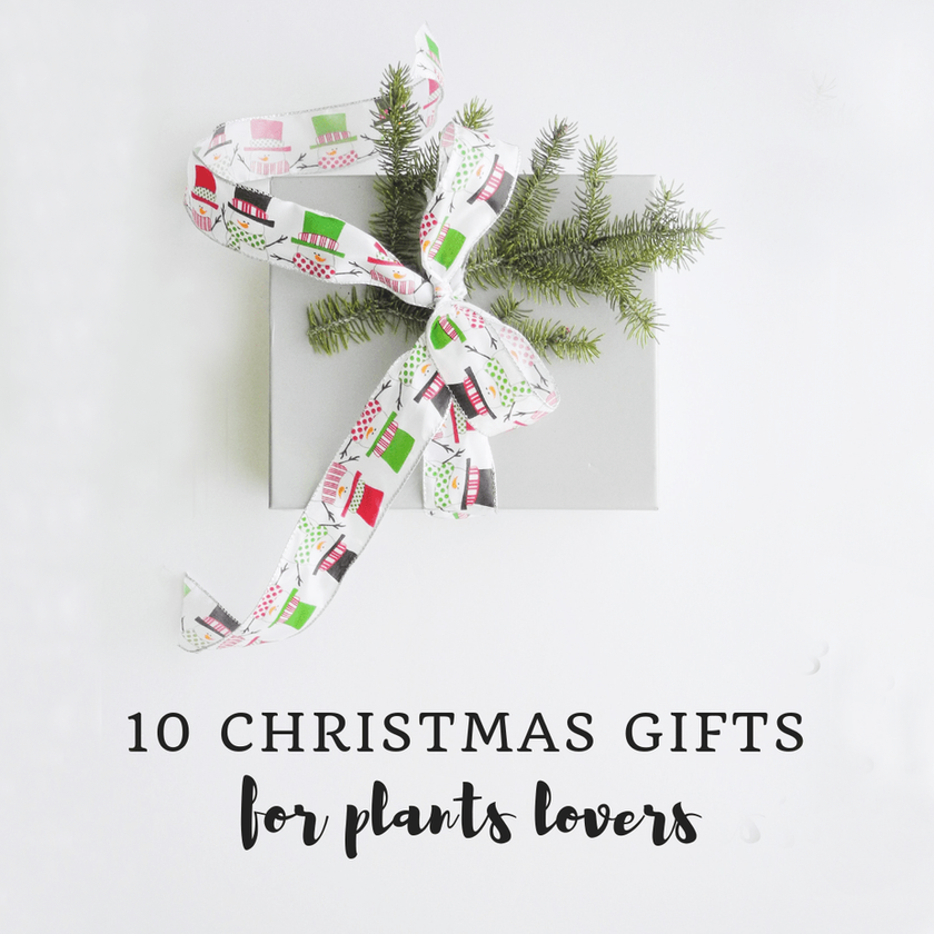 10 Perfect Christmas Gifts For Plants Lovers