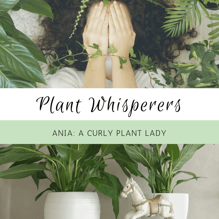 Plant Whisperers: Ania, A Curly Plant Lady