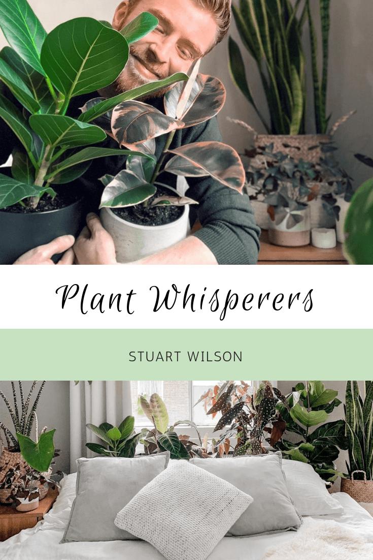 Plant Whisperers: Stuart Wilson