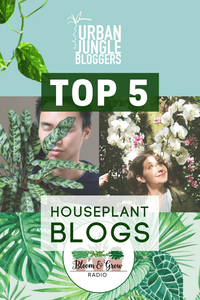 Houseplant Blogs Bloggers