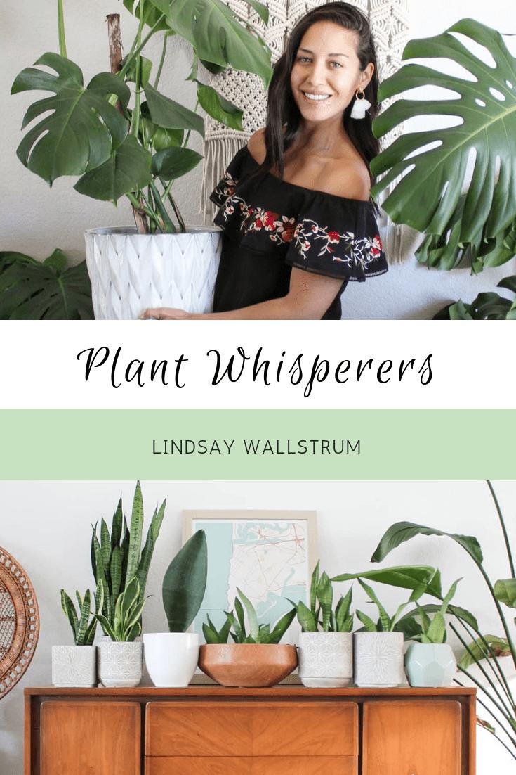 Plant Whisperers: Lindsay Wallstrum