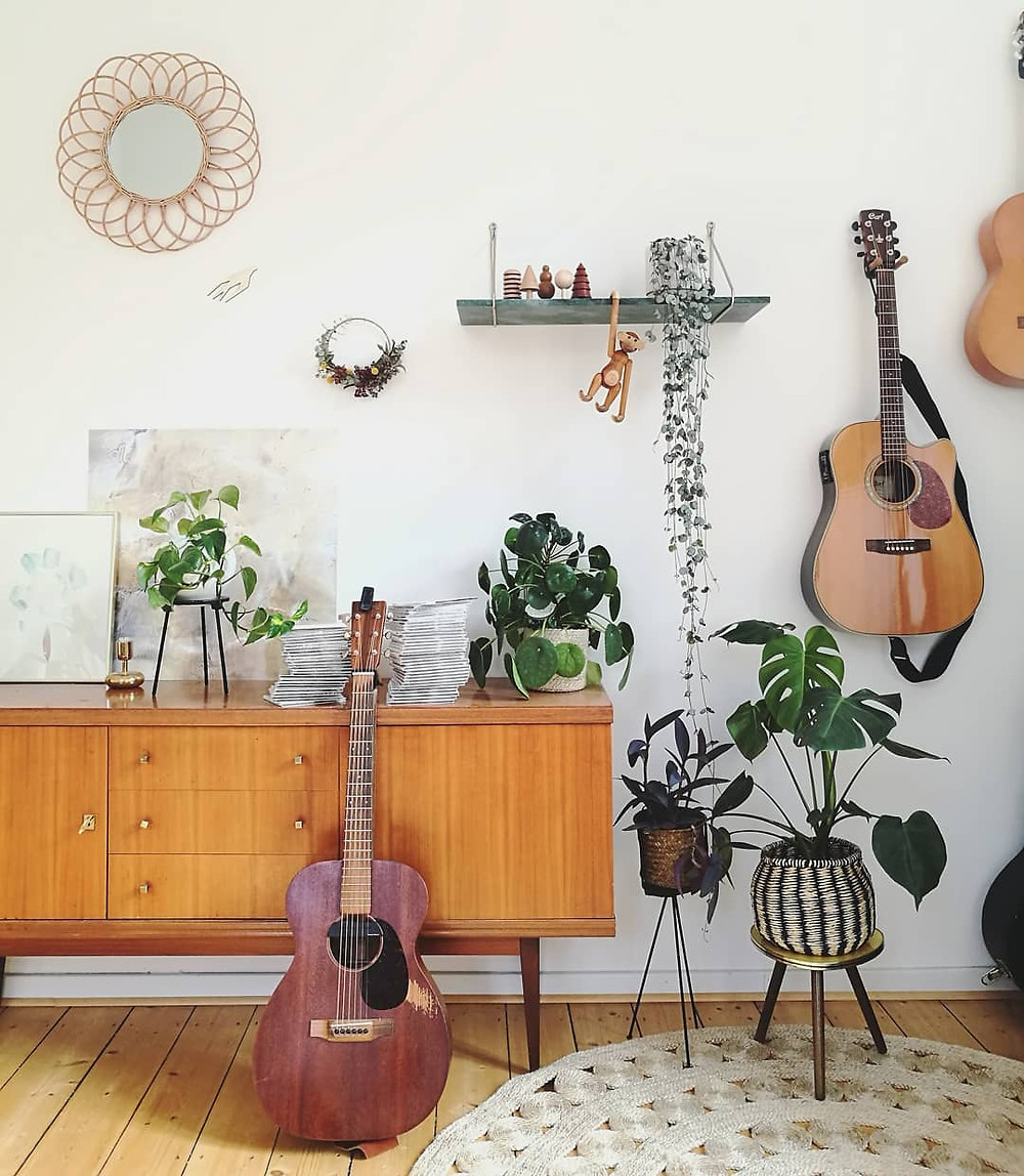 Plants music Boost Pilea Peperomioides houseplants