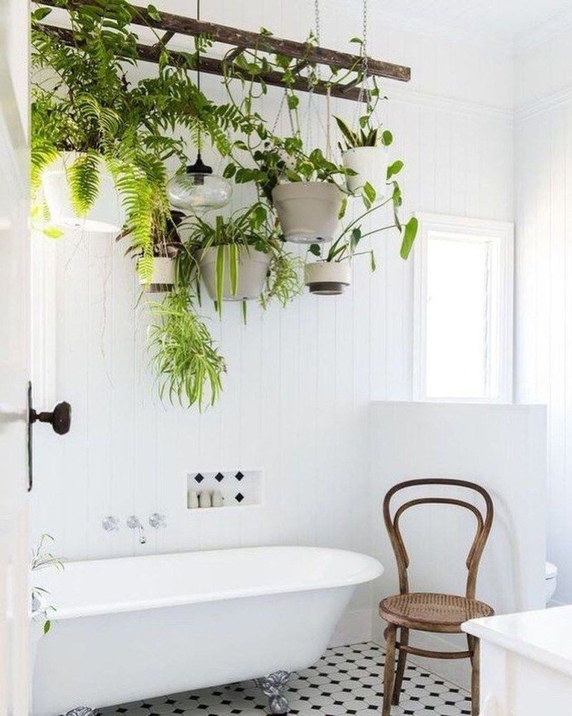 Houseplant Decor Bathroom Indoor Jungle