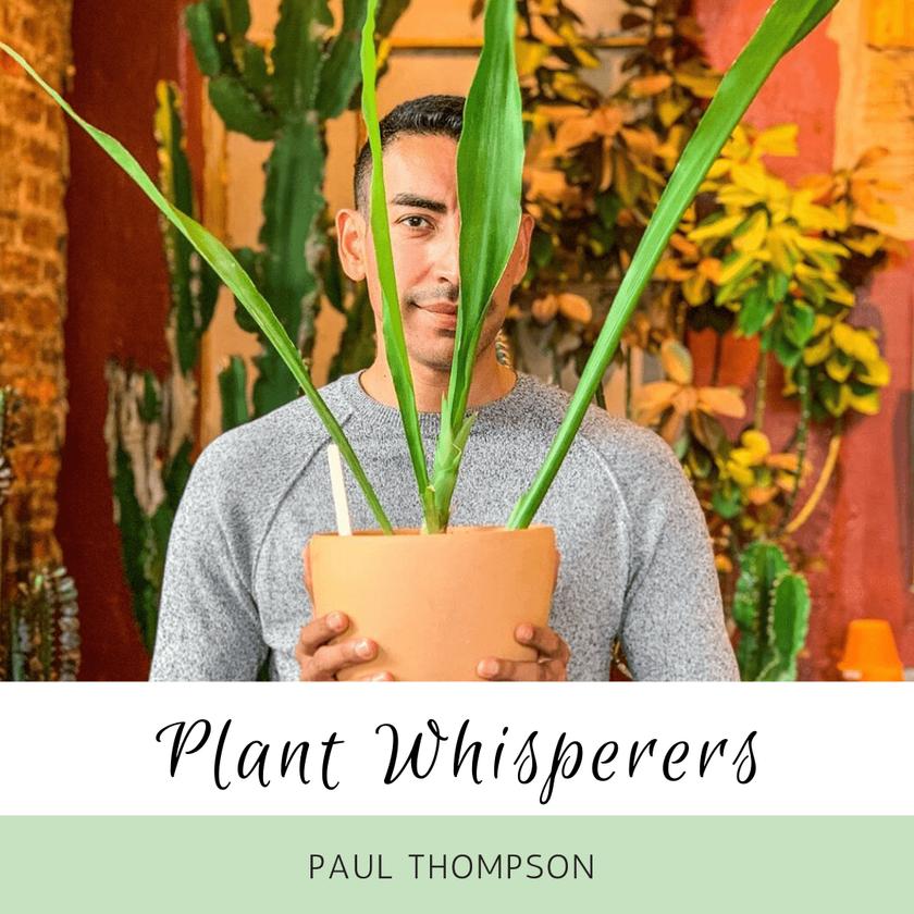 Plant Whisperers: Angela Eickholdt